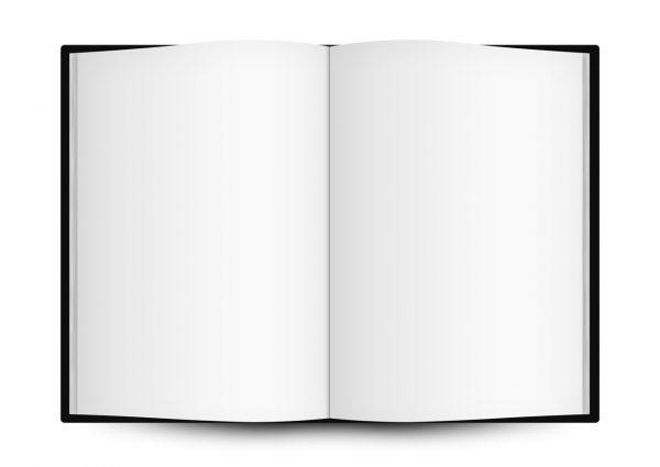 libro_bianco_aperto